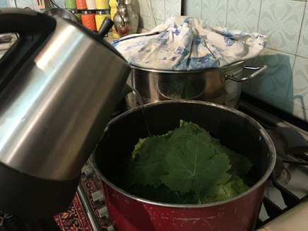Persian grape leave dolmeh recipe tutorial demo Tehran Iran